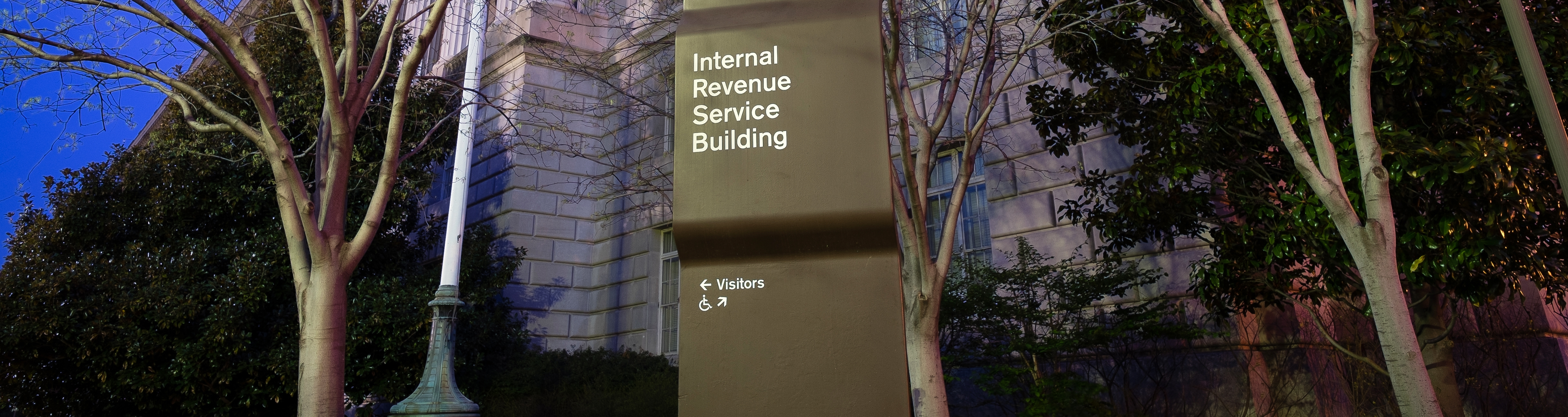 IRS_audit